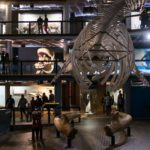 Cape Town Museum Night