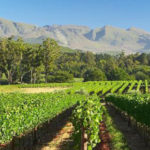 Cape Weekender in… Elgin & Grabouw
