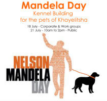 Mandela Day Kennel Building in Khayelitsha