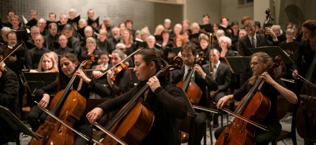 The Other Side Of The Orchestra
