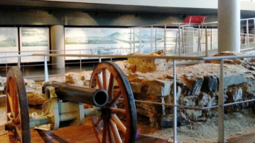 Guided Museum Tour