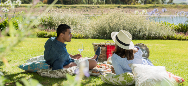 Summer Picnics in and around Cape Town