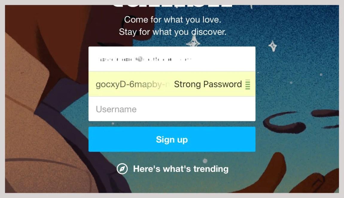 password page screenshot