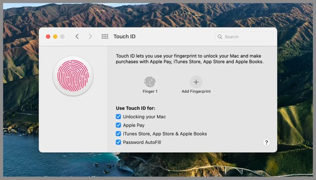 Screenshot of mac os touch id page