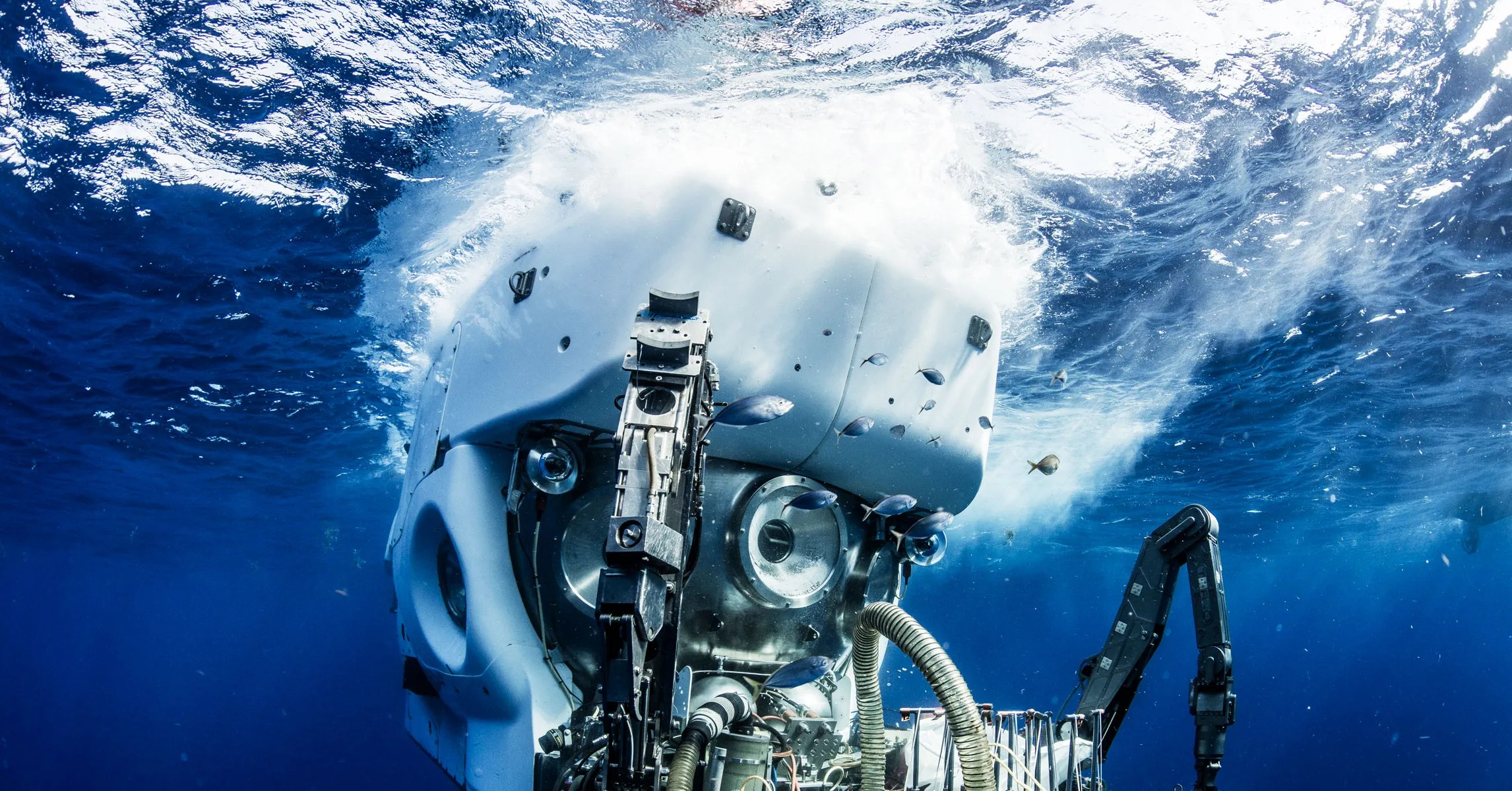 Offers deep sea fishing, private boat charters, and whale watching and sightseeing tours. The Oldest Crewed Deep Sea Submarine Just Got A Big Makeover Wired