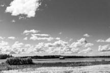 Lada och fält