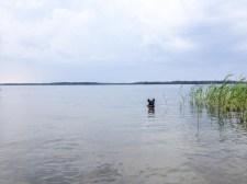 Långt ute i vattnet