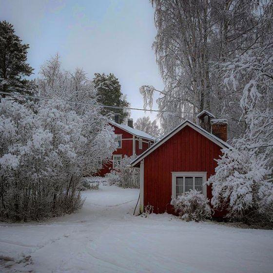 Vinter.