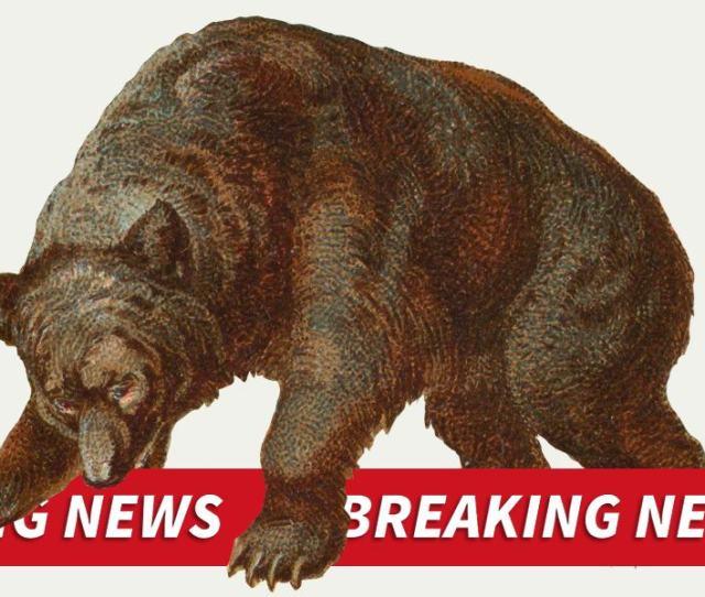 Breaking Bad News Bears