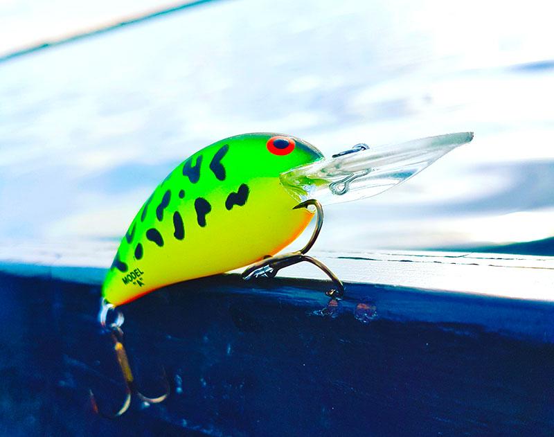 fiske med crankbaits