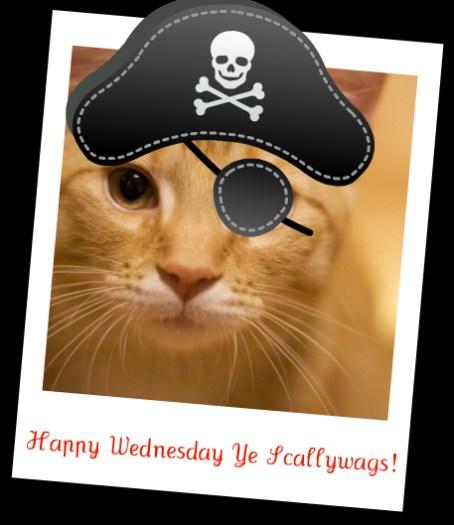 Watson Wednesday: Ahoy Mateys!