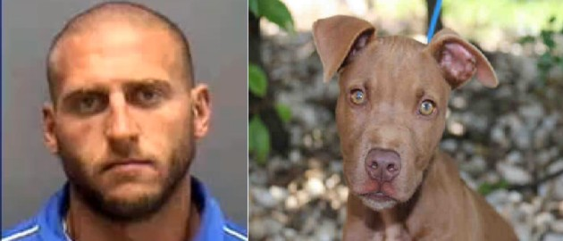 Students bust sick teacher who locked puppy in the trunk of his car FOR FOUR HOURS