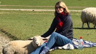 Picknick mit Kuschelpartner: Unsere Autorin freundete sich mit einer Schafherde an.