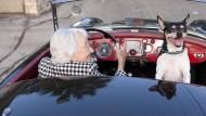 Sparen, damit man es im Alter krachen lassen kann: Haben sich womöglich die Präferenzen der Menschen verändert?