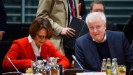 Sowohl die Integrationsbeauftragte der Bundesregierung, Annette Widmann-Mauz, als auch Innenminister Horst Seehofer sehen das Gesetz als Fortschritt.