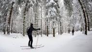 Bei Wintersportlern wie Skilangläufern ist das Skigebiet im Raum Sonnenberg beliebt. Auch die dreiköpfige Familie aus Hannover war dort auf Langlaufskiern unterwegs, als sie sich in der Dunkelheit verirrten.