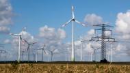Auch sauberer Strom muss transportiert werden: Windräder und eine Hochspannungsleitung bei Salzgitter