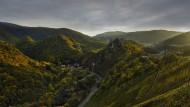 Der Lohn der Mühe ist nie weit: Die Spätburgunder von den Steillagen der Ahr zählen zu Deutschlands besten Rotweinen.