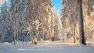 Der  Thüringer Wald blickt auf 226 Jahre Skigeschichte zurück: Der Pionier GutsMuths  war schon 1795 rund um das Schnepfenthal auf Ski unterwegs.