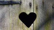 Forschung für die Kloake: Auch die Herzmedizin ist nicht davor gefeit.