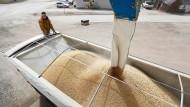 Auch Sojabohnen aus Amerika werden betroffen sein.