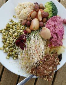 Bilden visar en tallrik med levande föda, skott, hummus, oliver, blomkålsröra och syrat vitlök.