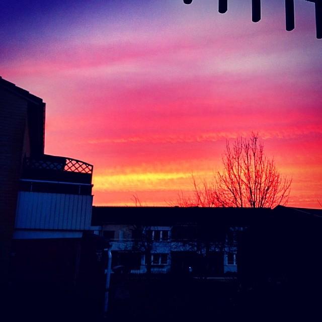 Rise and shine! God morgon!