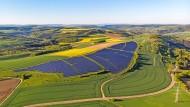Großer Stromlieferant:  Solarpark in der Pfalz