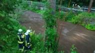 Feuerwehrleute suchen am Steinbach in Jöhstadt nach einer vermissten Person.