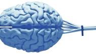 Wann wird die KI ein künstliches Gehirn?