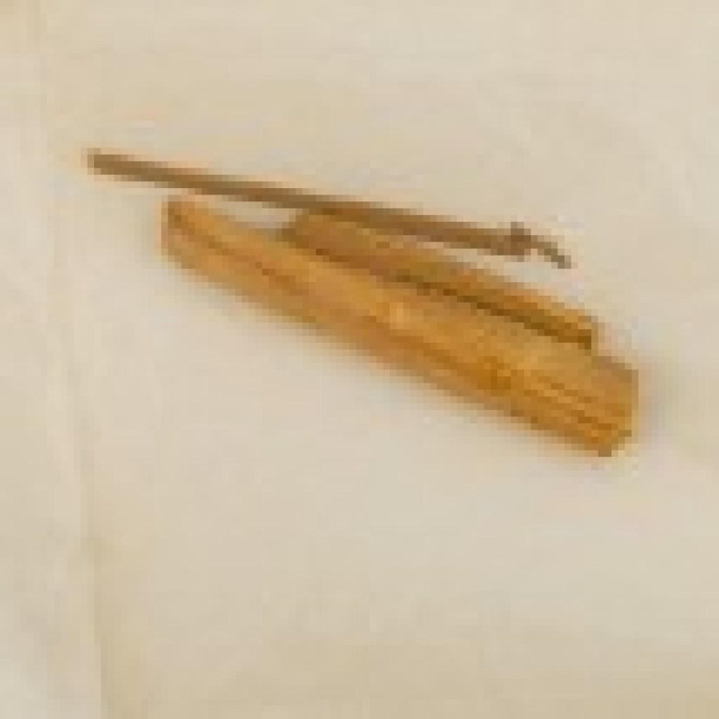 Schillers profane Reliquien: Wundersame Holzsplittervermehrung