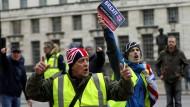 Demonstranten für den Brexit in London