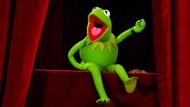 """Als Frosch fein raus? Kermit bei der Premiere eines """"Die Muppets""""-Filmes."""