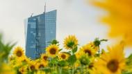 Die EZB und das Green Banking: Herausforderung Klimaschutz