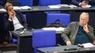 Die AfD-Fraktionsvorsitzenden Alice Weidel und Alexander Gauland im Bundestag