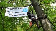 Besetzt: Baum und Baumbesetzer in einem Waldstück am Teufelsbruch im Osten von Frankfurt