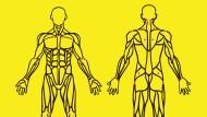 Wie die richtige Diagnose stellen, wenn eine Krankheit 150 Symptome haben kann? Schmerzen mindestens elf von diesen achtzehn Körperstellen, ist das ein wichtiger Hinweis.
