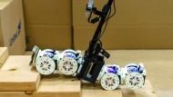 Der Transformer-Roboter MSRR (modular self refigurable robot) von der Cornell University steigt auch Treppen empor,  um sein Ziel zu erreichen.