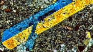 Das Vulkangestein von den Bermudas unter dem Mikroskop: Ein Dünnschliffbild in polarisiertem Licht zeigt Klinopyroxen-Kristalle, die zur Berechnung der Wasserkonzentration des Magmas verwendet wurden.