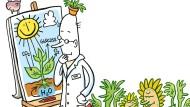 Im Grünen Bereich: Photosynthese