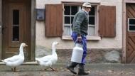 Bauernwirtschaft im süddeutschen Langenenslingen-Wilflingen.