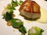 black cod with sprouts and tempura clams, Acadia