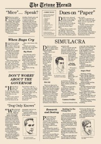 The Funny Papers
