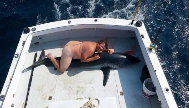Image result for jim mcelwain shark