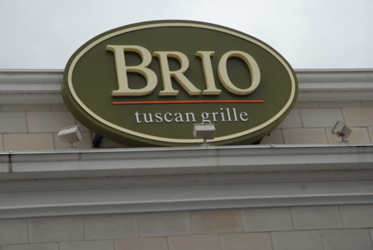 Roasted Lamb Chops Brio Tuscan Grille