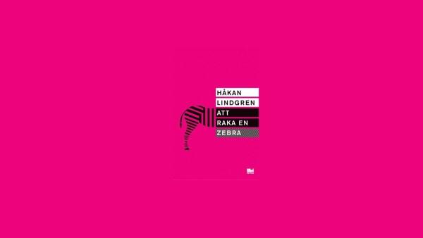 Zebra helt rosa 160201