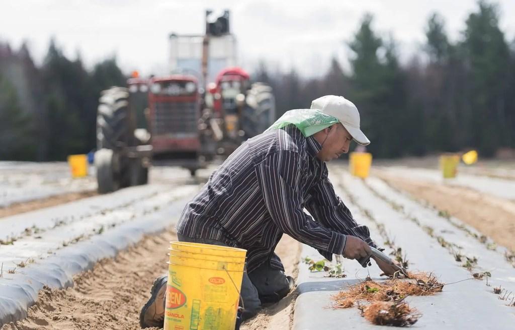 Québec ouvert à donner un autre coup de pouce aux agriculteurs