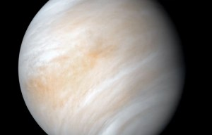 Des astronomes ont peut-être trouvé des indices de vie dans les nuages de Vénus
