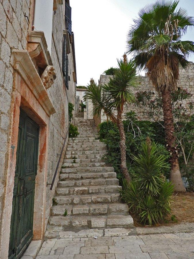 Stepenište sa palmicama
