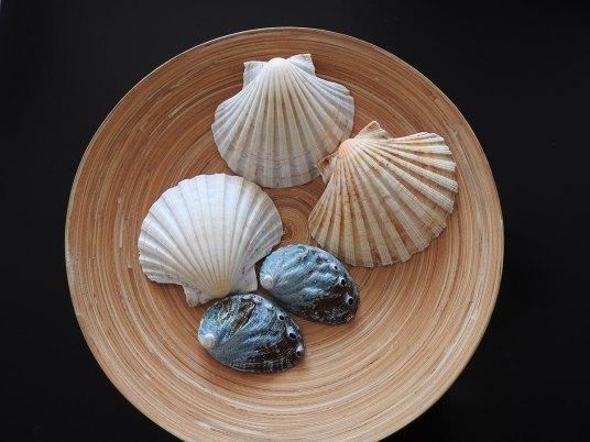 školjke u činiji
